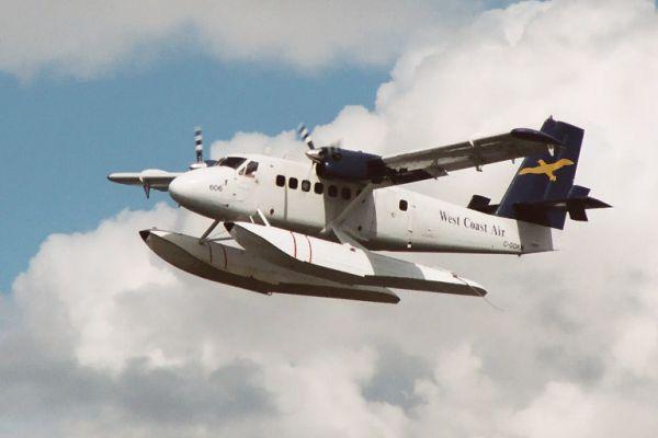 طائرة رجل الاعمال الامريكي هاري وين