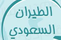 """""""تقرير انفوجرافيك"""": إحصائيات عن قطاع الطيران في المملكة العربية السعودية"""